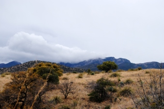Rain clouds over Mt. Wrightson Wilderness.